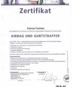 Fachtan Airbag und Gurtstraffer 001
