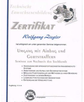Ziegler Airbag und Gurtstraffer 001